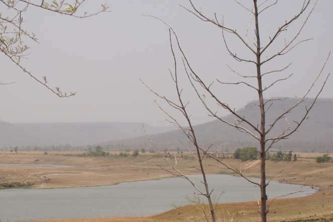 Dry river Ken at the proposed dam site at Daudhan village inside the Panna NP (Photo by Manoj Misra)