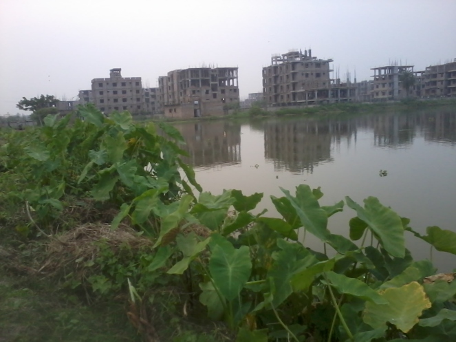 Illegal construction at Jagatipota mouza on East Kolkata Wetlands (Photo by Pravash Mallick)