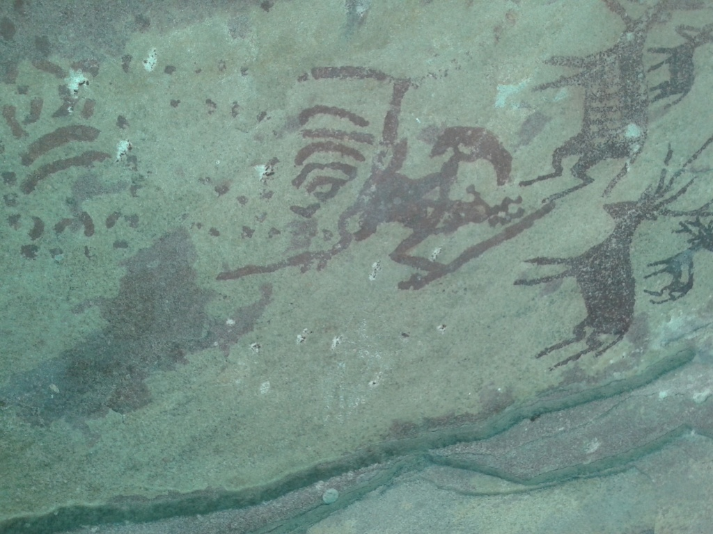 Prehistoric cave paintings within the Panna NP (Photo by Manoj Misra)
