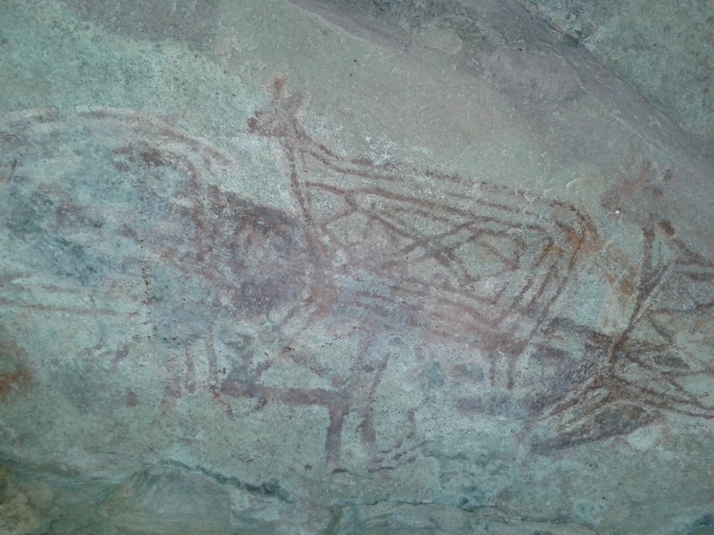 Prehistoric paintings in a cave in Panna NP buffer zone (Photo by Manoj Misra)