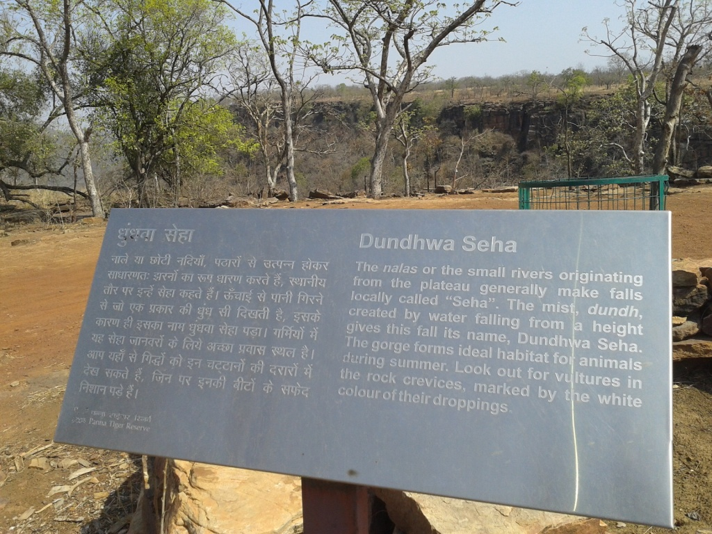 Seha information board (Photo by Manoj Misra)