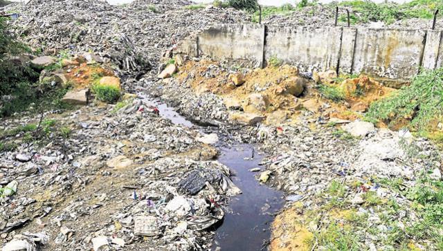 contaminated-bandhwari-faridabad-bandhwari-treatment-houseflies-hindustan_d65b7a34-7b7a-11e6-85ec-37294133f8ac