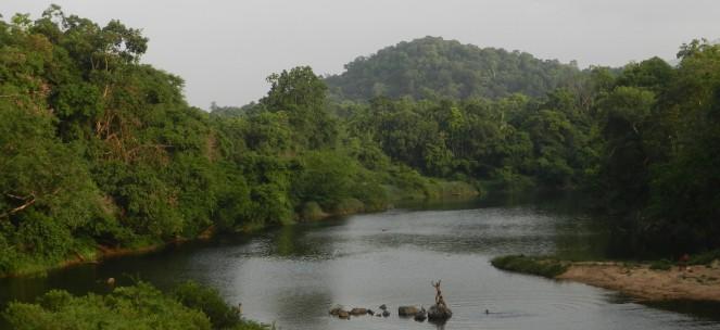 Kumardhara2012.jpg