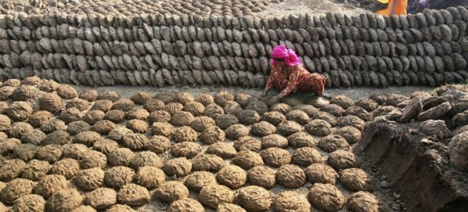 cow-dung-patties-sales-in-india2-770x350