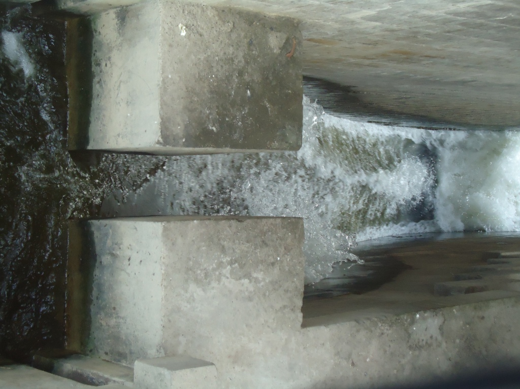 Water Flowing down the fish ladder at Narora barrage (Photo by SANDRP)
