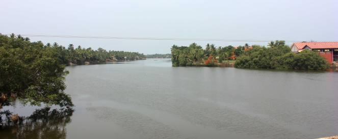 sal_river_goa_india