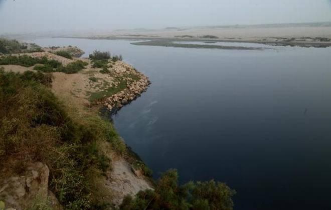 River Yamuna at Kambakshpur Village, Noida, Uttar Pradesh (Photo: The Hindu)