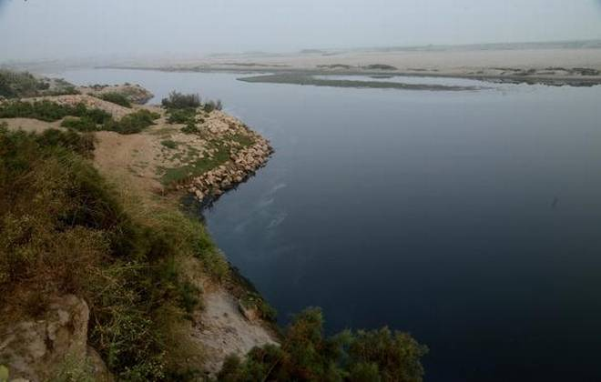 River Yamuna at Kambakshpur Village, Noida, Uttar Pradesh (Photo: The Hindu)