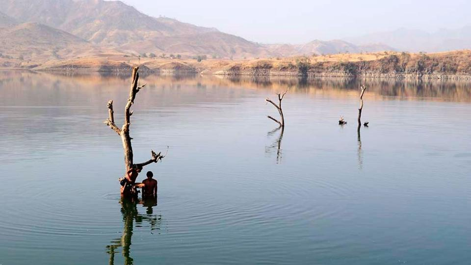 children-playing-near-a-tree-still-standing-on-their-submerged-farms-in-the-sardar-sarovar-reservoir