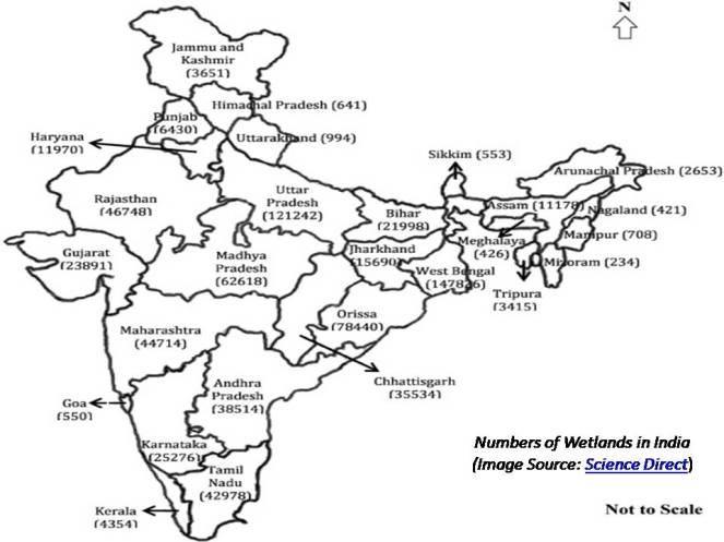 wetlands-in-india