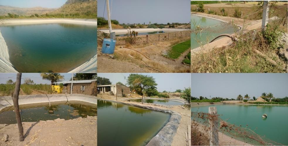 Farm Pond Online Application Maharashtra