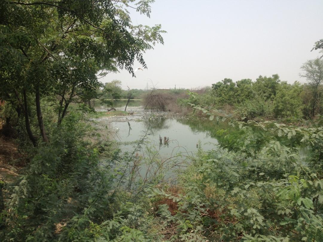 mukhmelpur01