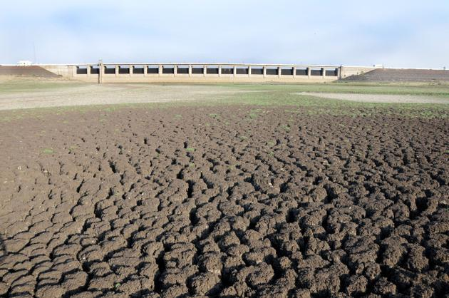 The dried up Manjara Dam near Latur. Photo Vivek Bendre, The Hindu