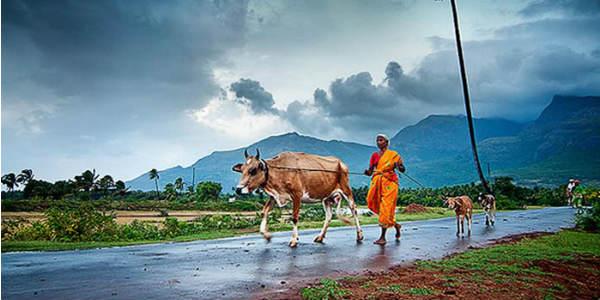 Monsoon-in-India4.jpg