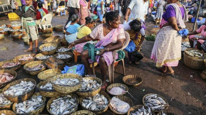 A vendor sits waiting for customers at the Margoa wholesale fish market in Goa (Bloomberg via Getty Images)