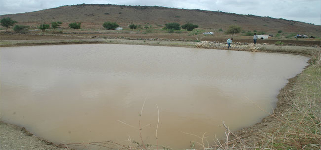 farm-pond_4110