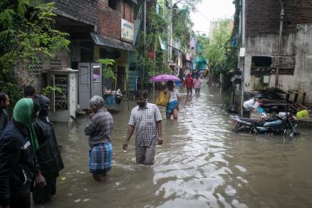 Adyar River Set 16
