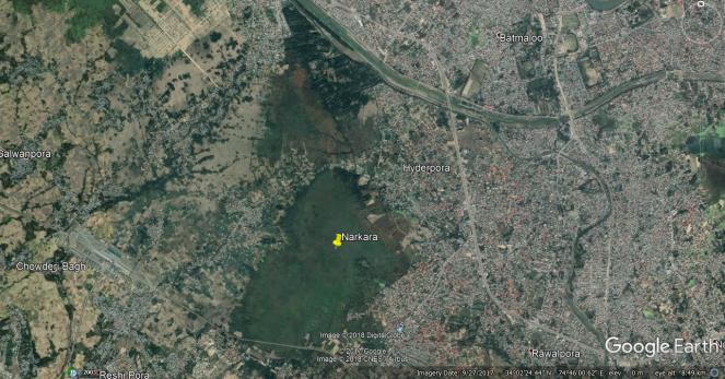 Narkara Wetland