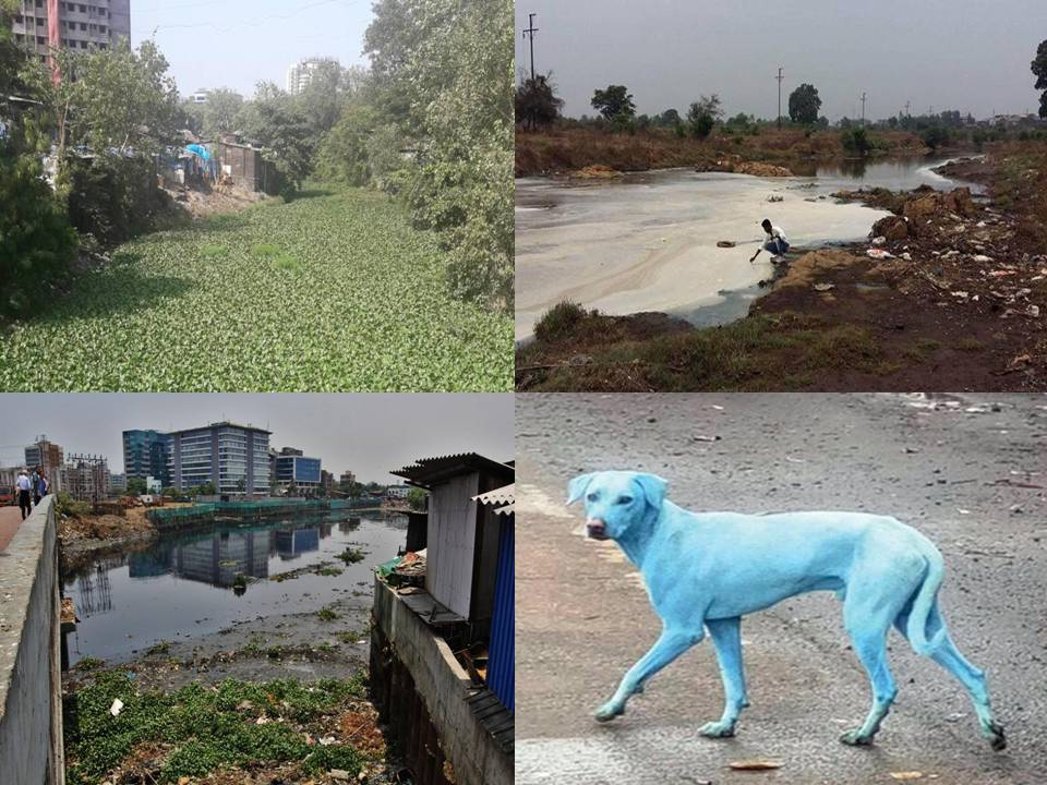 58a901055 Maharashtra Rivers Review 2017  Multi-colored Rivers! – SANDRP