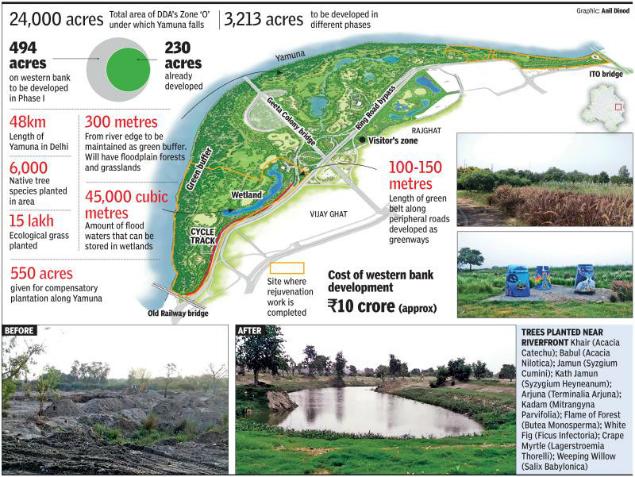Delhi Yamuna Biodiversity Park