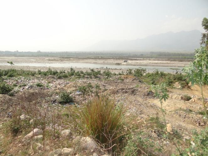 8 WD Vikas Nagar 10 4 19