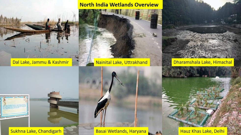 Wetlands Overview 2019 North India No Land For Wetlands