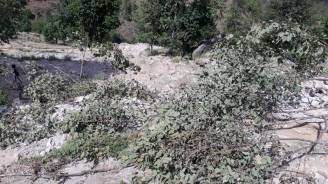 Impact of cloud burst in Mansari village. Several fields are filled with silt, debris. Soil erosion and trees flattened as an impact of the incident. Images by Chandan Gusain.