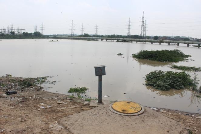 Paking in Yamuna Floodplain, Garhi Mandu