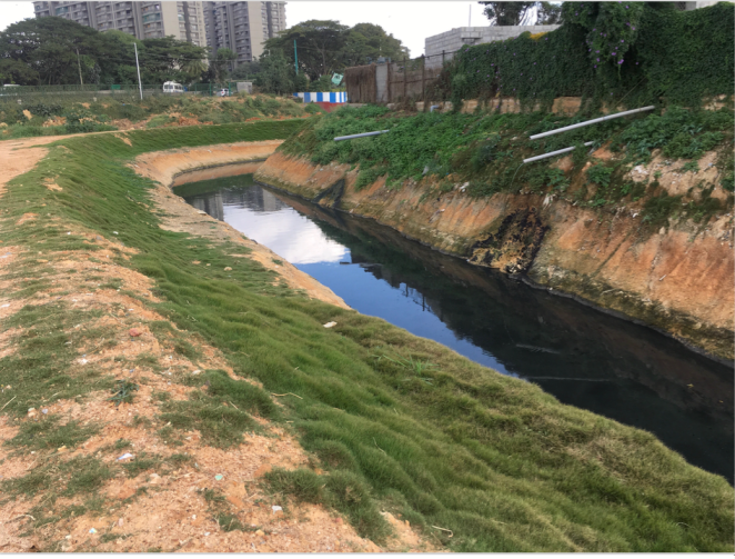 Bellandur lake (Bangalore) Diversion. Photo: Bangalore Environment Trust