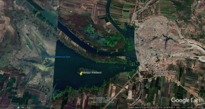 25 Nandur Wetland