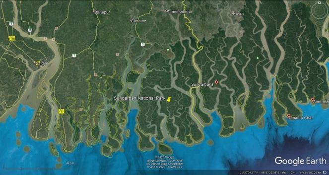 30 Sundarbans j