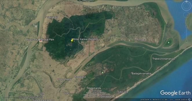 32 Bhitar Kanika Wetlands j