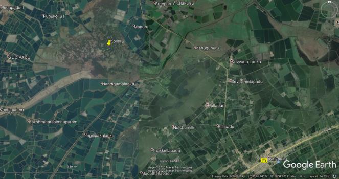 33 Kolleru Wetland