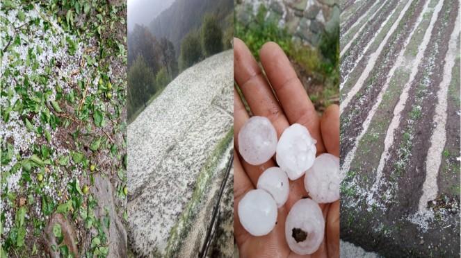 Hailstorm Naugaon in Uttarkashi